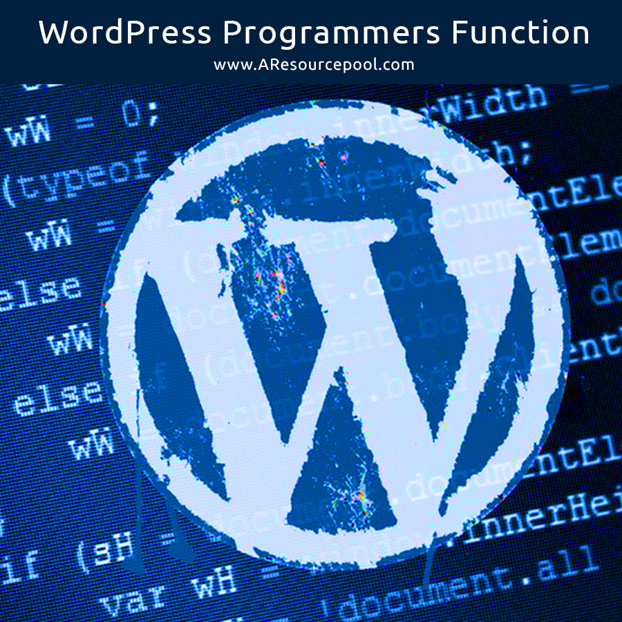 WordPress Programmers Function